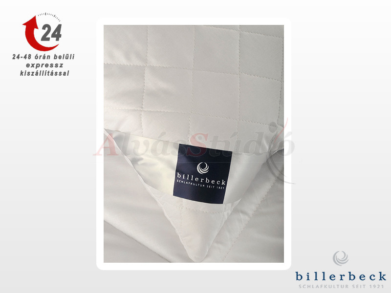 Billerbeck CHANTAL nagypárna 70x90 cm