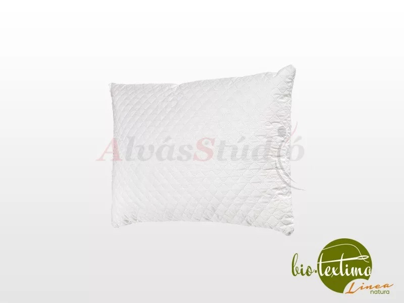Bio-Textima Lineanatura Sleepy-58 memory párna 58x39 cm