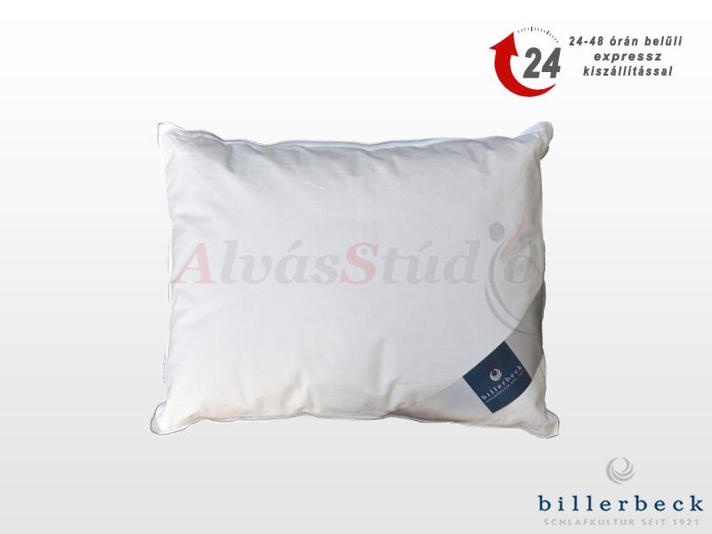 Billerbeck AloeLUX kispárna 36x48 cm