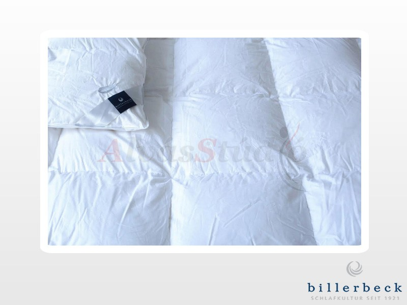 Billerbeck Lille téli pehelypaplan 200x220 cm